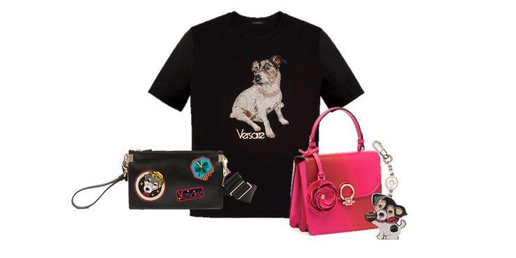 Versace посвятили коллекцию собаке Донателлы