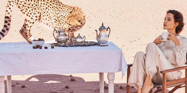 10 способов носить леопардовый принт на ногтях