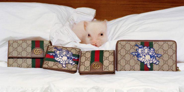 Три поросенка: Gucci выпустили коллекцию в честь года свиньи