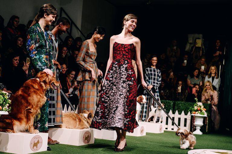 Как модный показ превратился в выставку собак?