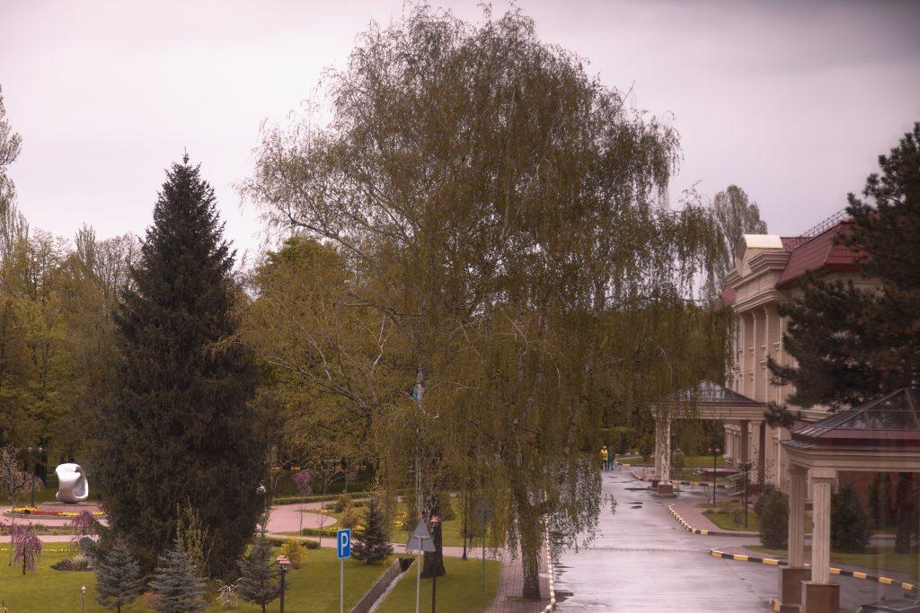 Как отдохнуть и улучшить здоровье, не выезжая за пределы Алматы?