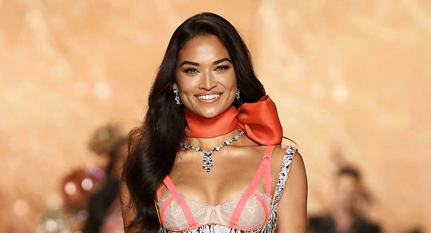 Шанина Шейк: показ Victoria's Secret 2019 отменен