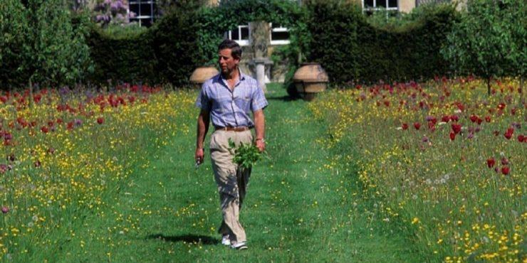 Платья из крапивы. Принц Чарльз стал дизайнером