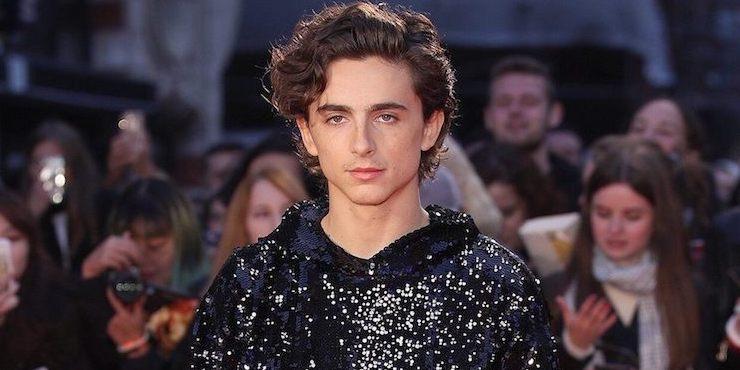 Тимоти Шаламе в блестящем худи Louis Vuitton разобьет ваше сердце