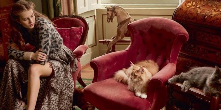 Кис-кис мяу: как выглядит косметика с кошками