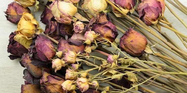 Идеи для дома: как использовать засохший букет цветов?