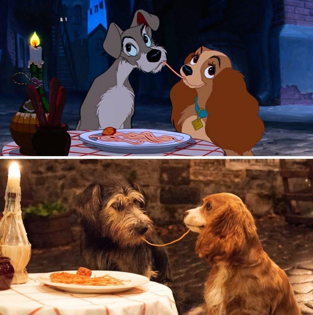 Собаки спагетти