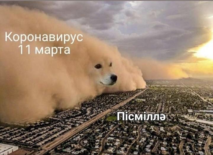 Коронавирус в Казахстане: самые оригинальные мемы
