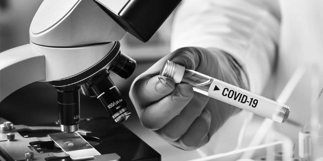 Антитела к коронавирусу: можно ли выработать иммунитет к Covid-19?