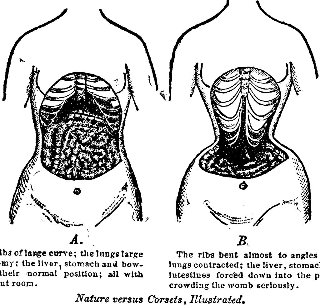 корсеты анатомия 2