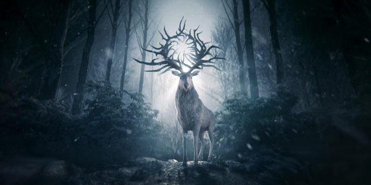 Первый взгляд на новый сериал от Netflix «Тень и кость»