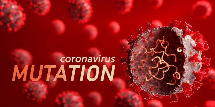 В ЮАР обнаружился более заразный вирус, чем британский