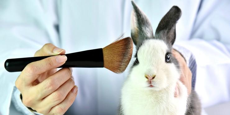 В Великобритании разрешили тестирование косметики на животных